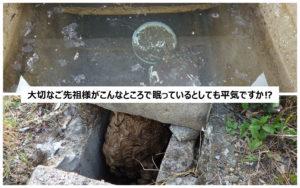お墓の納骨室に水がたまる・ハチが巣を作る